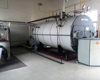 WNS Steam Boiler in Palm Oil Line
